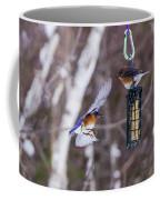 Docking Bluebird Coffee Mug