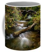 Dogwoods Along The Provo Deer Creek Coffee Mug