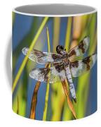 Dragonfly Perched By Pond Coffee Mug