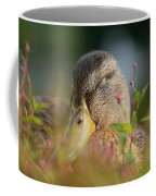 Duck 2 Coffee Mug