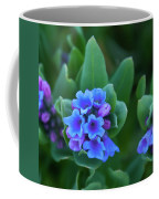 Dwarf Bluebell Detail Coffee Mug