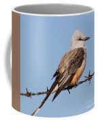 Edward Scissor Tail Coffee Mug