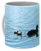 Eurasian Coot And Offspring In Ria Formosa. Algarve, Portugal Coffee Mug