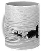 Eurasian Coot And Offspring In Ria Formosa, Portugal. Monochrome Coffee Mug