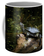 European Pond Turtle Sitting On A Trunk In A Pond Coffee Mug