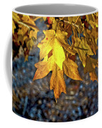 Fall Has Sprung Coffee Mug