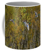 Fall Time Mallards Coffee Mug