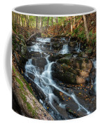 Falling Waters In October Coffee Mug