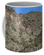 Family Of Saguaro Coffee Mug
