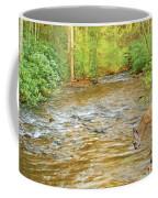 Fawn Drinking From Stream Coffee Mug