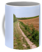 Field With Brown Cut Flax In Rows Drying In The Sun Coffee Mug
