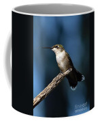 Flick Of The Tongue - Ruby-throated Hummingbird Coffee Mug