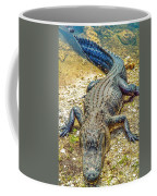 Florida Gator 2 Coffee Mug
