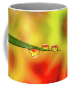 Flower In Water Droplet Coffee Mug