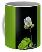 flowers of a Bougainvillea w4 Coffee Mug