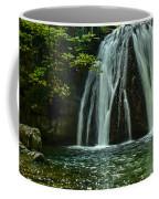 Flowing Falls  Coffee Mug