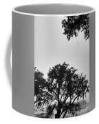 Fog Landing Coffee Mug by Robert Knight