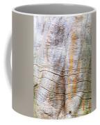 Foster Trees 4 Coffee Mug