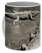 Gator  Park Residence Coffee Mug