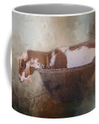 Goat In A Bucket Coffee Mug