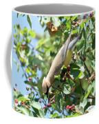 Gotta Have It Coffee Mug by Sally Sperry