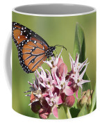 Grafton Queen Coffee Mug
