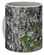Gray Treefrog - 8522-2 Coffee Mug