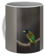 Great Barbet Coffee Mug