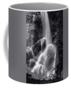 Grizzly Falls Coffee Mug
