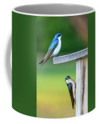 Happy Home Coffee Mug
