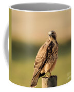 Hawk On The Edge Of A Field Coffee Mug