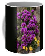 Hedgehog Cactus And Yellow Daisies Coffee Mug