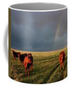 Heifers And Rainbow Coffee Mug by Rob Graham