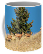 Herd Of Colorado Deer Coffee Mug