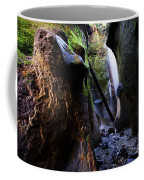 Hidden Falls Sombrio Beach 3 Coffee Mug