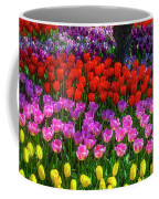 Hidden Garden Of Beautiful Tulips Coffee Mug