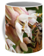 Honeybee Nectar Search Coffee Mug by Brian Hale