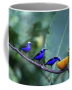 Honeycreeper Buffet Line Coffee Mug