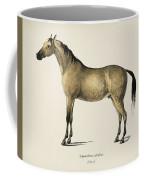 Horse  Equus Ferus Caballus  Illustrated By Charles Dessalines D' Orbigny  1806-1876  Coffee Mug
