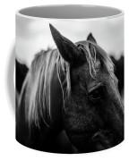 Horse Up-close Coffee Mug
