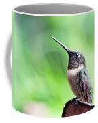 Hummingbird 90 Coffee Mug
