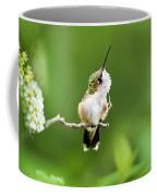 Hummingbird Flexibility Coffee Mug