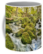 Janet's Foss Flow  Coffee Mug
