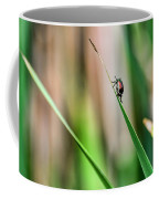 Japanese Beetle Climbs Plant Coffee Mug