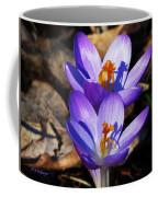 Jewels Coffee Mug