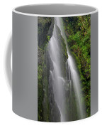 Lee Falls Close Up Coffee Mug