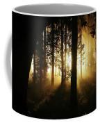 Light In The Woods Coffee Mug