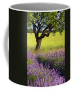 Lone Tree In Lavender And Mustard Fields Coffee Mug by Brian Jannsen