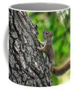 Lost Nuts Coffee Mug
