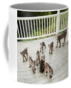 Lynx Family Portrait Coffee Mug by Tim Newton